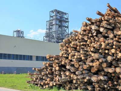 Case Study: Protection Strategy in Wood Processing Facilities